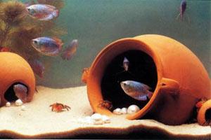 Горшки для аквариума