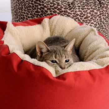 Кошачья лежанка